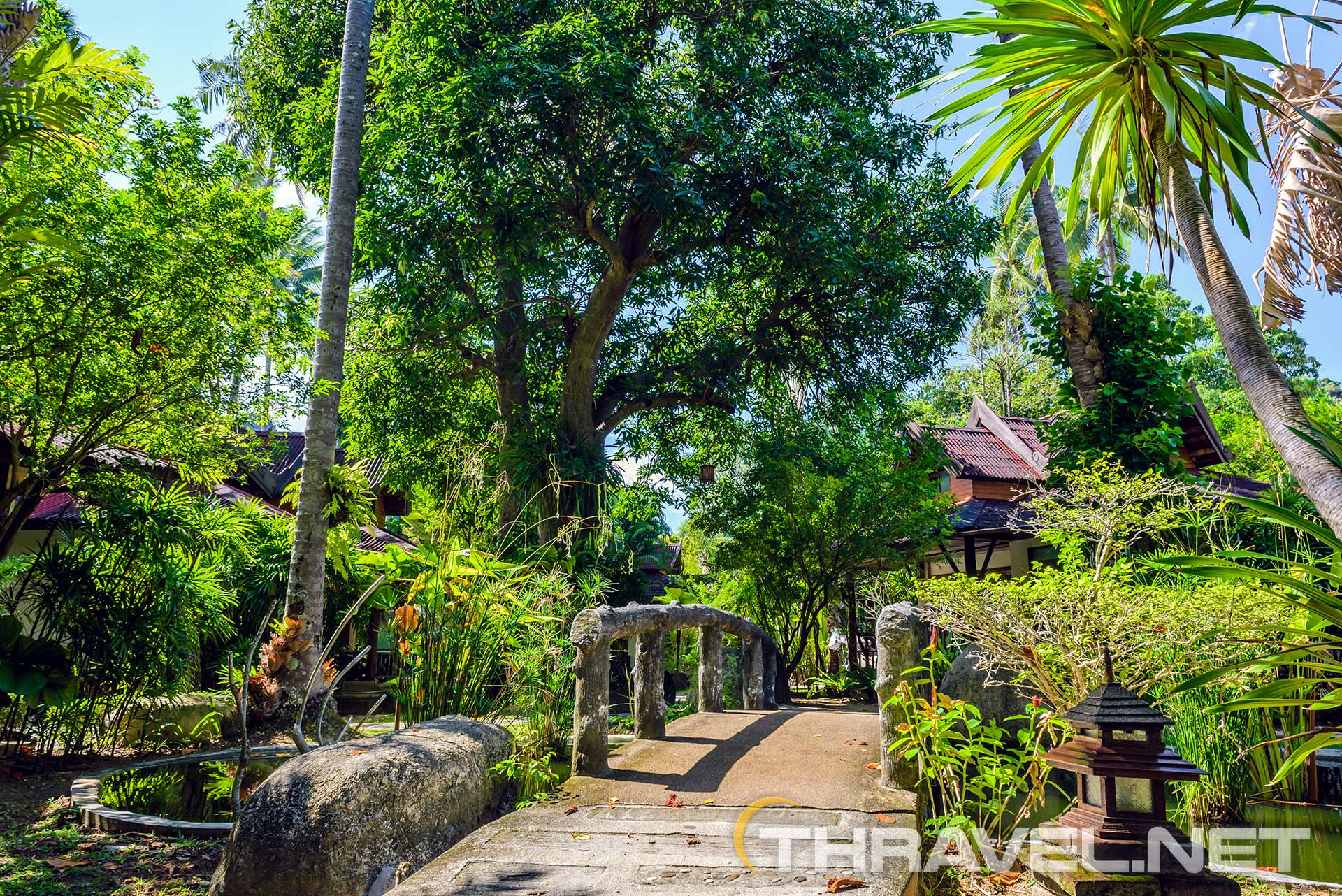 Sunset-Tropical-Resort-garden