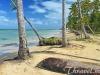 grand-bahia-principe-samana-beach