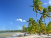 samana-dominican-republic-best-beaches