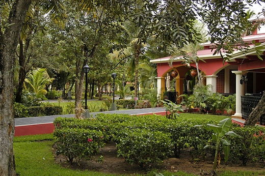 hotel-riu-tequila-playa-del-carmen-mexico-_-garden