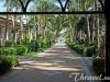 hotel-riu-bambu-garden