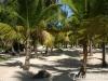 punta-cana-hotel-beach