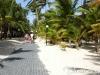 punta-cana-hotels-riu-bambu-garden