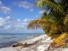 saona-island-dominican-republic-camera-nikon-d100-10
