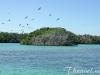 sian-ka-an-park-bird-island