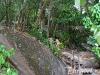similan-islands-thailand-camera-nikon-d600-07