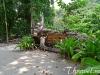 similan-islands-tours-20