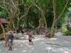 similan-islands-tours-camera-nikon-d600-19