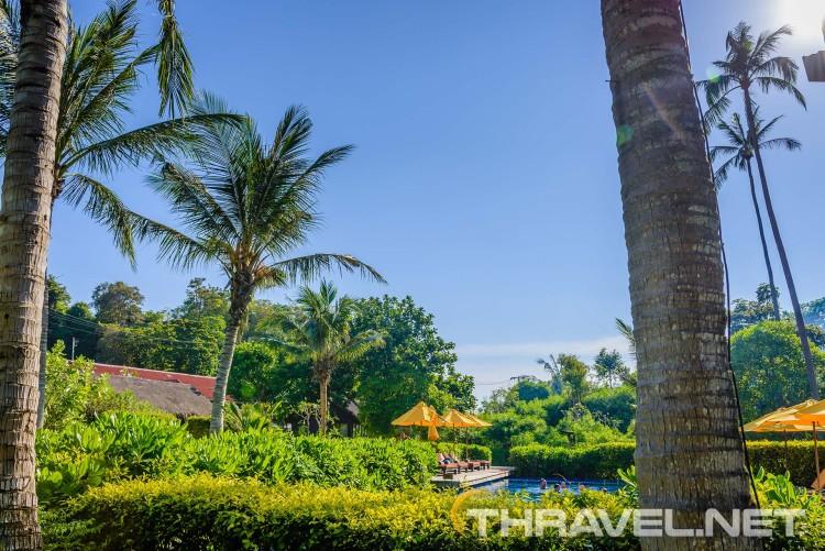 Zeavola resort Phi Phi Island - pool
