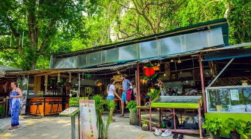Dining and Nightlife in Railay, Thailand